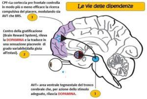 dopamina-it-000